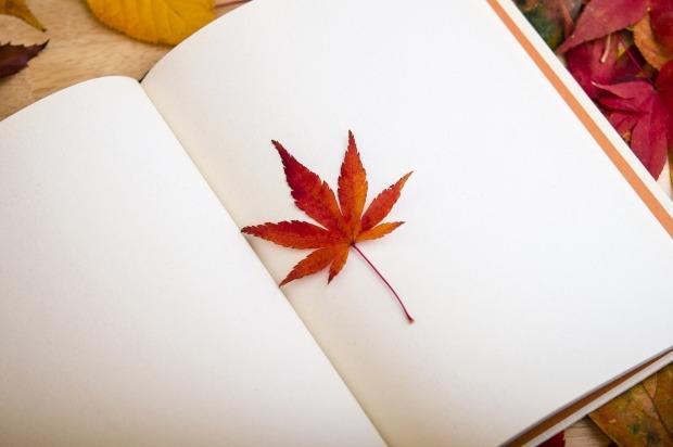 maple-leaf-638022_1280